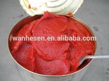 high quality and best price Tomato Paste In Drum