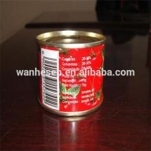 28-30% 70g tinned tomatoes paste export to Africa