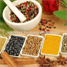 Vietnam spices : pepper. star anise, cassia