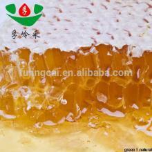 Hot sale high quality organic acacia honey