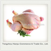 halal frozen price of broiler chicken