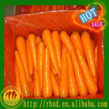 2014 good quality fresh preserved carrots
