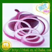 2014 new corp fresh onion China