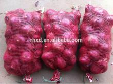 China market onion prices/new season fresh onion