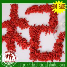 dried Lycium chinensis goji berry dried goji berry ningxia