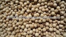 good quality black/white pepper with cheap price