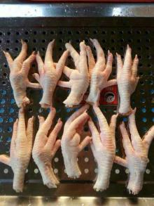 Grade A Chicken Feet and Paws for sale