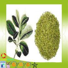 Chinese organic yerba mate tea , mate tea