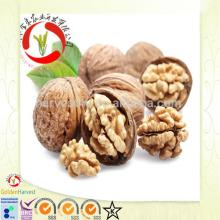 Chinese organic walnut logs in shell for sale