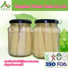 Canned Baby Corn in jars or in tins with good quality