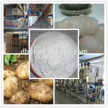 Fresh Yellow holland potato starch Potato Seeds