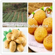 farm   products  free from pollution-shananxi native fresh potato
