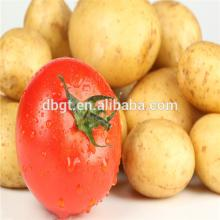 2014 chinese fresh style potato export to foreign vegetable market