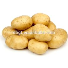Fresh Best Quality Potatos