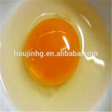 best quality and non-Sterility /Dry egg yolk powder