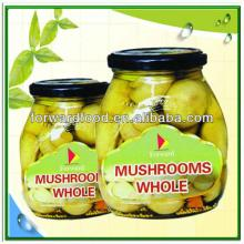 370ML Canned  Mushroom  In  Glass   Jar
