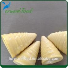 whole canned bamboo shoot in tin