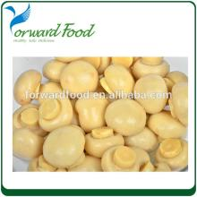 580ml best canned mushrooms whole in brine in jars canned champignon mushrooms