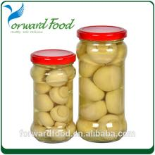 fresh whole mushroom in jar