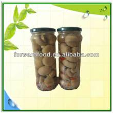 370ml canned mushroom button in glass jars