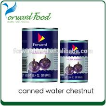 567G FRESH organic canned water chestnut in tins