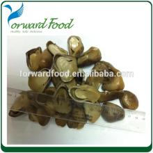 vegetable price list straw  mushroom  in  tins