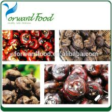 567G HOT SALE organic canned water chestnut in tin