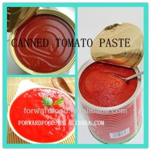 High quality canned tomato paste in tin