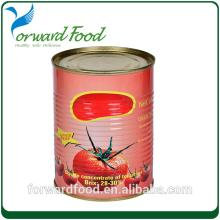 Best price for Canned Tomato Paste in Sachet