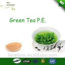 Natural health benefits Green Tea Extract Powder