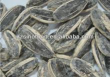 Sunflower Seeds Roasted Snack Food