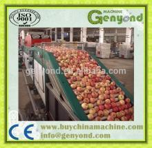 Fruit  cleaning  machine/ fruit waxing machine/fruit grading machine