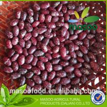 Chinese purple speckled kidney beans for sale
