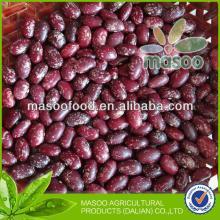 New crop round PSKB, Purple Speckled Kidney Bean, China, Heilong jiang origin, new 2013 crop