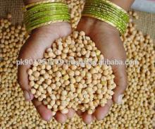 chickpeas, garbanzo bean, pois chiche, chick peas, ceci exporters to Algeria, Turkey Japan , Russia