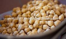 White Best Quality Chickpeas Mexican Chickpeas / Garbanzo Beans For Australia , New Crop kabuli Chic