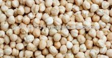 Top Quality Chickpeas , chana , garbanzo bean , hummus , desi chickpeas , iran chickpeas