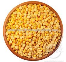 yellow split Pea / split yellow tuar dal / mutter dal / dried yellow split peas