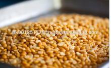 Fresh Yellow chick peas exporter China Brazil Nigeria Spain Vietnam Germany Italy Burma France Thail
