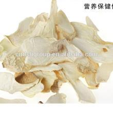 Top quality Pleurotus eryngii /king oyster mushroom