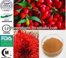 100% Natural  Lycium   Barbarum   Extract /Goji Berry P.E.