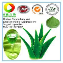 Aloe Vera Whole Leaf Concentrated Juice Powder