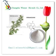Sweet Wormwood Extract Artemisinin 99% p.e. anti cancer