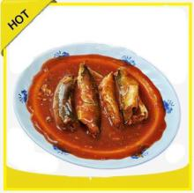 supplier of types canned sardine fish foods in tomato