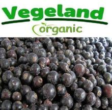 Organic  Frozen   IQF   Blackcurrant