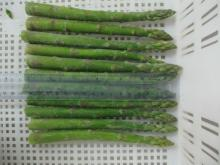 frozen  green   asparagus   spear s
