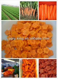 chinese new frozen  sliced   carrots