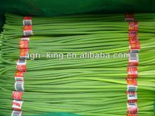 vegetable price/frozen garlic sprout being hot