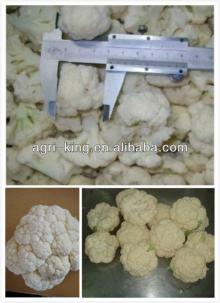 grade A organic frozen organic cauliflower