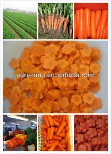 list of frozen foods/frozen sliced carrots hot sale